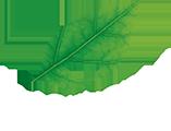 logo-drorganic